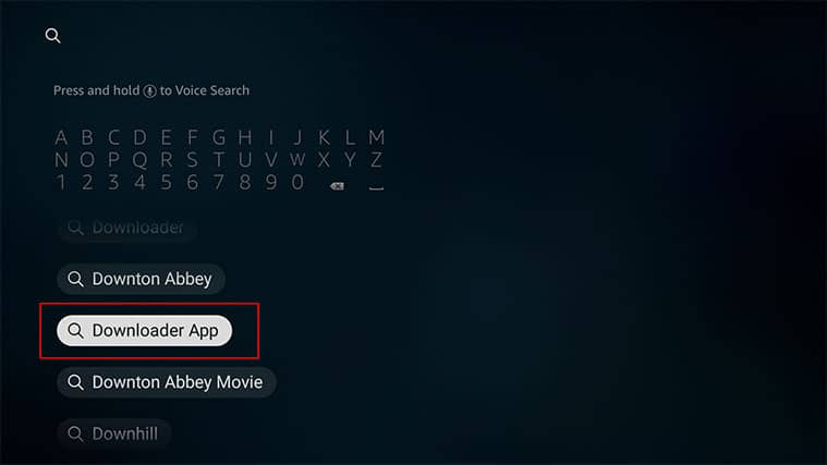 An image featuring how to install Nora GO on FireStick via Downloader step2