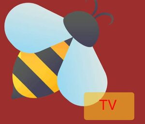 How to Install BeeTV on FireStick [User Guide Included]